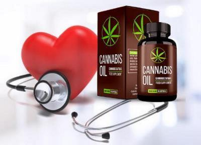 Cannabis Oil za visok krvni tlak, kje kupiti, názory, Slovenija